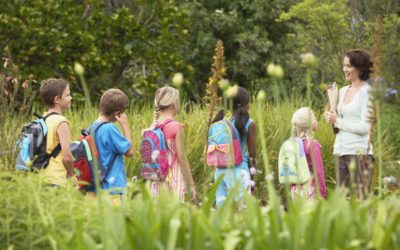 The Best Field Trip Request: An Onsite Educator
