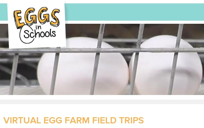 American-Egg-Board-Virtual-Egg-Farm-Field-Trips