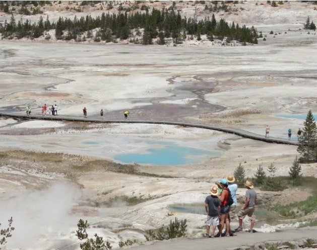 Porcelain-Basin-Overview-Northern-Part-of-Norris-Geyser-Basin