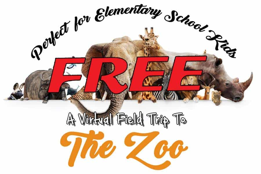 A FREE Virtual Field Trip To The Zoo