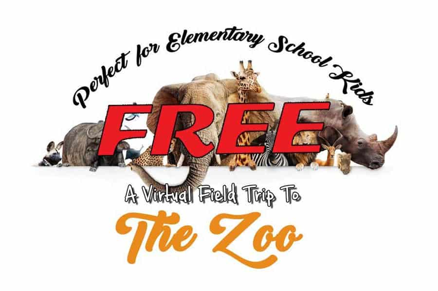 free virtual field trip to the zoo banner